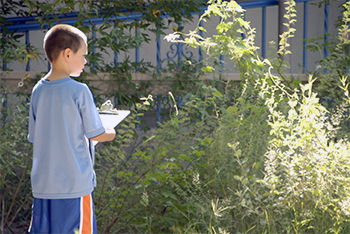 Photo of student studying plant